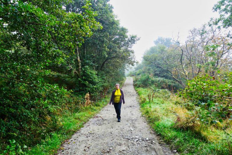 Wieder auf dem West Highland Way ab Rowardennan