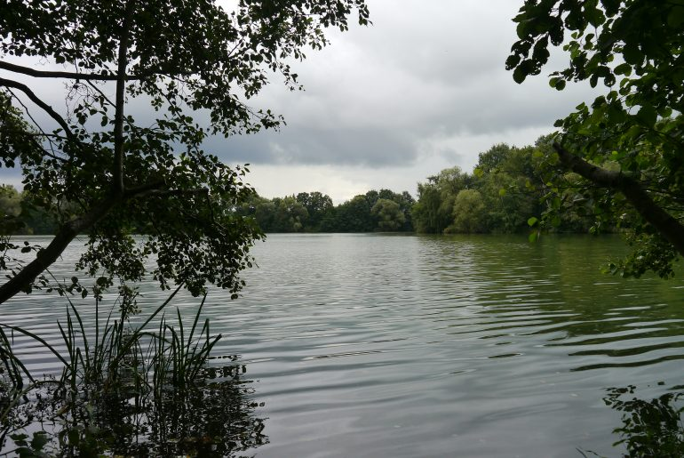 """Einer von vielen Plätzen längs des Seeufers mit """"privatem Zugang"""" zum See"""