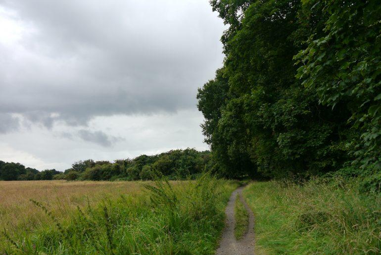 Die Wege sind von Wald und Feldern begleitet
