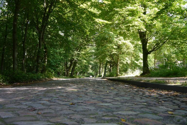 Altes Kopfsteinpflaster führt langsam in den Wohldorfer Wald