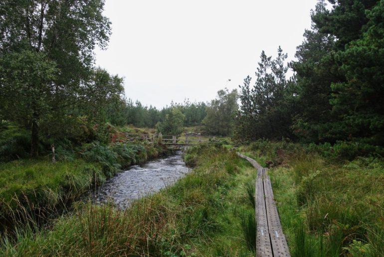 """Der """"Board Walk"""" führt über Flüsse..."""