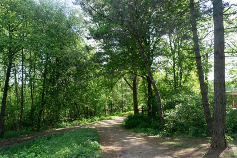 Carl-Stamm-Park